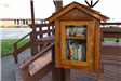 Moseley Triangle little library (29)